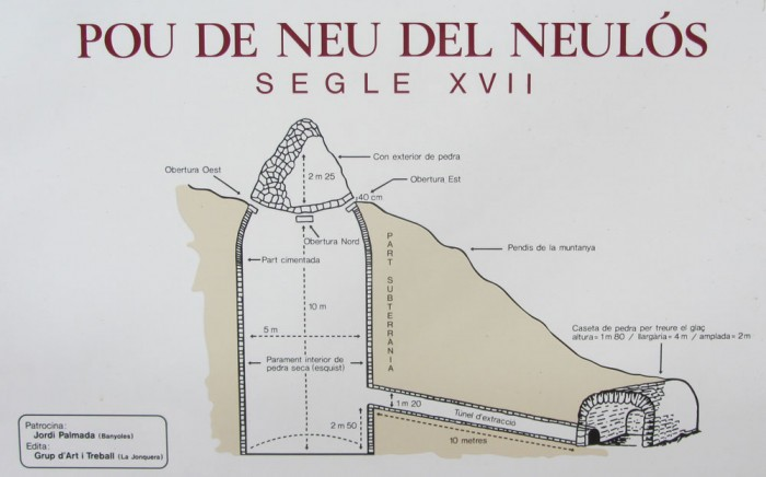 Cross-section of the pou de neu