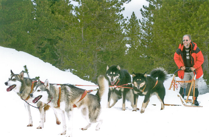 Dog sledding on the Plateau de Beille, near Tarascon