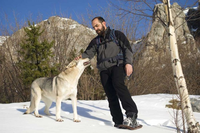 Walking and dogs in national and natural parks