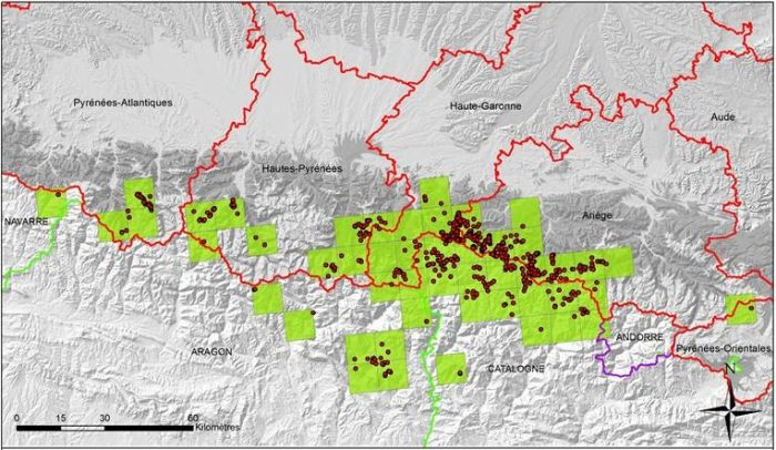 Presence of bears in the Pyrenees 2017