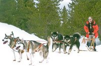 Dog sledding on the Plateau de Beille